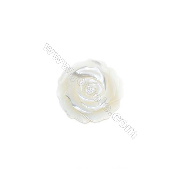 White mother-of-pearl rose shell, 30mm, hole 1mm, 5pcs/pack