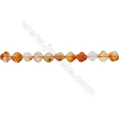 Natural Carnelian Beads Strand  Flower  Size 10x10mm  hole 1mm  about 40 beads/strand 15~16""