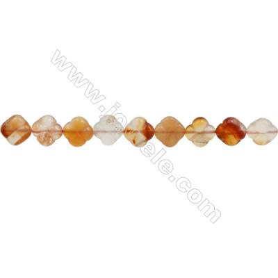 Natural Carnelian Beads Strand  Flower  Size 12x12mm  hole 1mm  about 33 beads/strand 15~16""