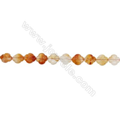 Natural Carnelian Beads Strand  Flower  Size 14x14mm  hole 1mm  about 28 beads/strand 15~16""