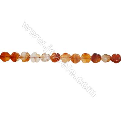 Natural Carnelian Beads Strand  Clover  Size 10x10mm  hole 1mm  about 38 beads/strand 15~16""
