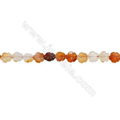 Natural Carnelian Beads Strand  Clover  Size 12x12mm  hole 1mm  about 33 beads/strand 15~16""