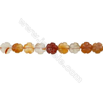 Natural Carnelian Beads Strand  Clover  Size 14x14mm  hole 1mm  about 27 beads/strand 15~16""