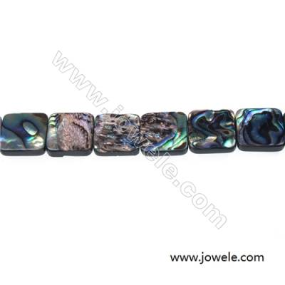 Abalone/Paua shell rectangle beads strand, Size 14x14 mm, Hole 1 mm, about 28 beads/strand, 15 ~ 16""
