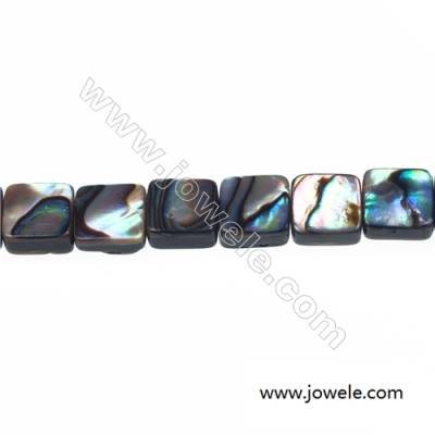 Abalone/Paua shell rectangle beads strand, Size 8x8 mm, Hole 1 mm, about 50 beads/strand 15 ~ 16""