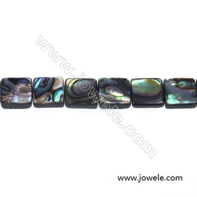Abalone/Paua shell rectangle beads strand, Size 10x10 mm, Hole 1 mm, about 41 beads/strand, 15 ~ 16""