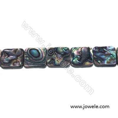 Abalone/Paua shell rectangle beads strand, Size 16x16 mm, Hole 1 mm, about 25 beads/strand, 15 ~ 16""
