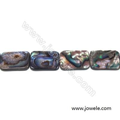 Abalone/Paua shell square beads strand, Size 15x20 mm, Hole 1 mm, about 20 beads/strand, 15 ~ 16''