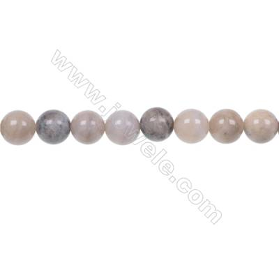 Natural fossil coral agate strand beads 8mm jewelry making  hole 1mm  48 beads/strand  15~16""