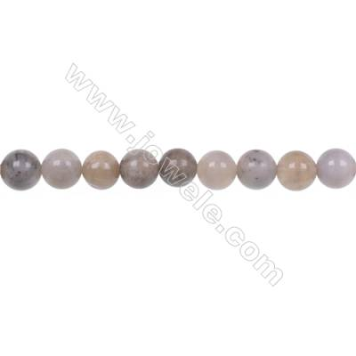 """Natural fossil coral agate strand beads 6mm jewelry making  hole 1mm  67 beads/strand  15~16"""""""