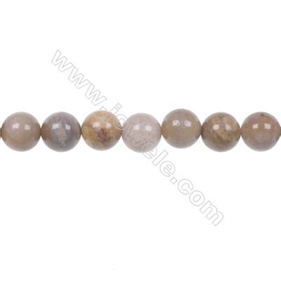 Wholesale Indonesia jasper strand beads in diameter 8mm hole 1mm  49 beads/strand 15~16''