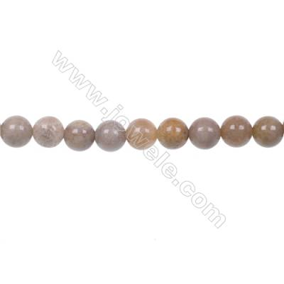 Wholesale Indonesia jasper strand beads in diameter 6mm hole 1mm  65 beads/strand 15~16''