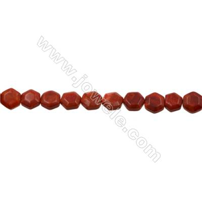 Sponge Coral Beads Strand  6x12mm  Hole 0.7mm  about 35 beads/strand  15-16""