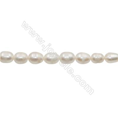 "Natural Fresh Water Pearl  White Size 10~11mm  Hole 0.7mm  15~16""/strand"