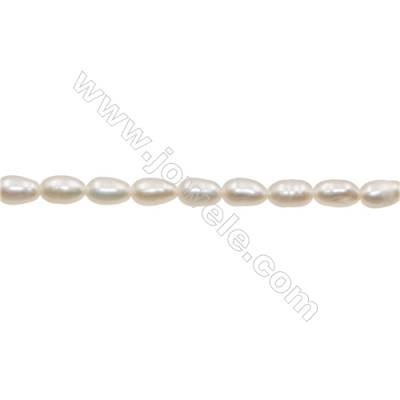 "Natural Fresh Water Pearl  White  Size 5~6mm  Hole 0.4mm  13~14""/strand"