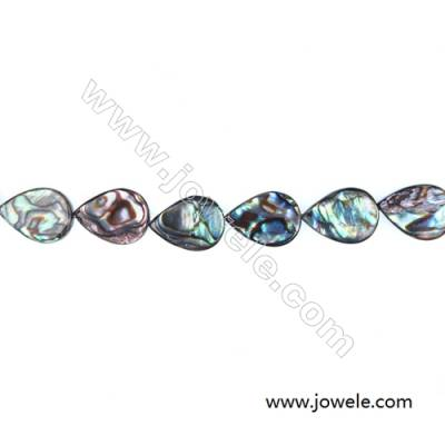 Teardrop Abalone/Paua Shell Bead Strands, 12x16 mm, Hole 0.8 mm, About 25 beads/strand, 15~16""