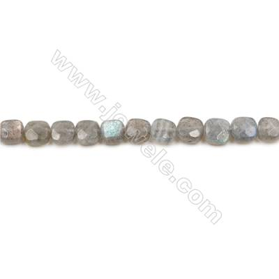 Natural Labradorite Strand Beads  Square(Faceted)  Size 6x6mm  Hole 0.6mm  66 beads/strand  15-16""