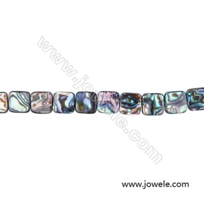 Abalone/Paua Shell Bead Strand, Square, Size 12x12mm, Hole 0.8mm, About 33 beads/strand, 15 ~ 16""
