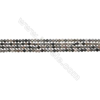 "Natural Black Moonstone Bead Strands  Round(Faceted)  Diameter 2mm  Hole 0.3mm  15~16""/strand"