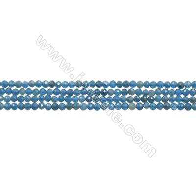 "Natural Apatite Bead Strands  Round(Faceted)  Diameter 2mm  Hole 0.3mm  15~16""/strand"