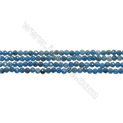 "Natural Apatite Bead Strands  Round(Faceted)  Diameter 3mm  Hole 0.6mm  15~16""/strand"