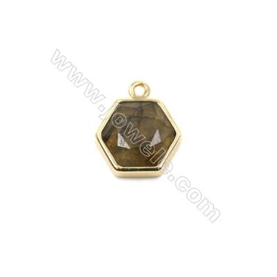 Natural Labradorite with Brass Plated Gold Pendants, Polygon(Faceted), Size 12x13mm, Hole 1.5mm, Thick 6mm, 8pcs/pack