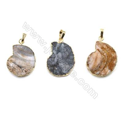 Waterdrop Electroplating Druzy Agate with Brass Plated Golden Pendants, Size 24x34mm, 7pcs/pack