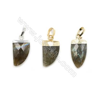Natural Labradorite with Brass Pendants, (Gold, Platinum)Plated, Arrow(Faceted), Size 10x21mm, 6pcs/pack