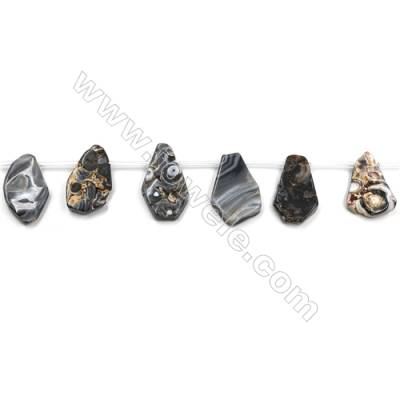 """Natural Black Agate Slice Bead Strands  Size 20~14x32~19mm  Hole 0.8mm  16 beads/pack  15~16"""""""