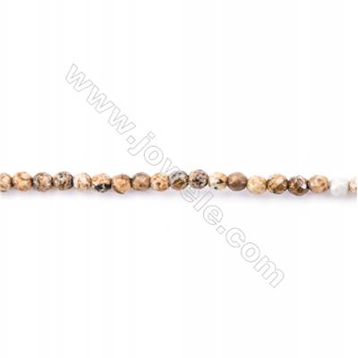 Faceted Natural Picture Jasper Beads Strand  Round  diameter 2mm   hole 0.4mm   about 179 beads/strand 15~16''
