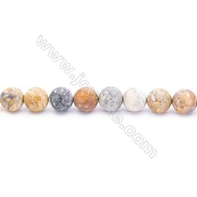 Frosted Sky Eye Jasper Beads Strand  Round  Diameter 10mm  hole 1mm  about 39 beads/strand 15~16""