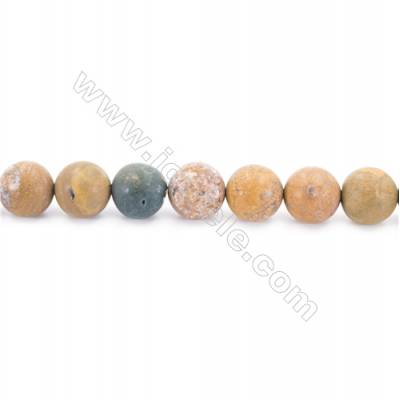"""Frosted Ocean Jasper Beads Strand  Round  Diameter 12mm  hole 1.5mm  about 33 beads/strand 15~16"""""""