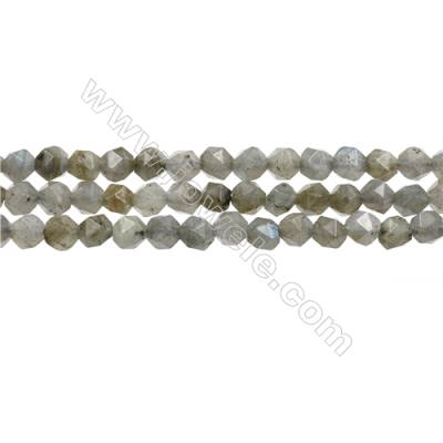 Natural Labradorite Beads Strands, Star Cut Faceted, Size 6mm, Hole 1mm, 15~16''/strand