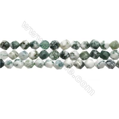 Grade A Natural Tree Agate Beads Strands, Star Cut Faceted, Size 6x6mm, Hole 0.8mm, 15~16''/strand