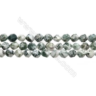Grade A Natural Tree Agate Beads Strands, Star Cut Faceted, Size 8x8mm, Hole 0.8mm, 15~16''/strand
