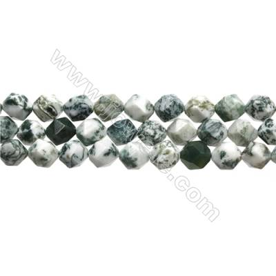 Grade A Natural Tree Agate Beads Strands, Star Cut Faceted, Size 10x10mm, Hole 0.8mm, 15~16''/strand