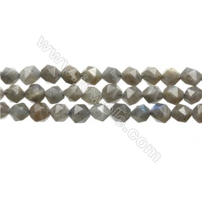 "Grade AA Labradorite Beads Strands, Star Cut Faceted, Size 8x8mm, Hole 0.8mm, 15~16""/strand"