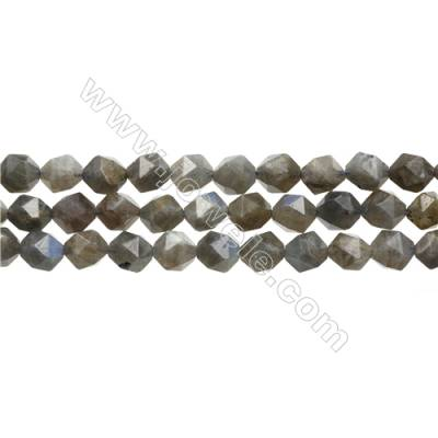 "Grade AA Labradorite Beads Strands, Star Cut Faceted, Size 10x10mm, Hole 0.8mm, 15~16""/strand"
