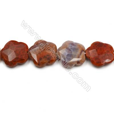 "Natural Fire Agate Faceted Beads Strands, Flower, Size 33mm, Hole 1.5mm, 15~16""/strand"