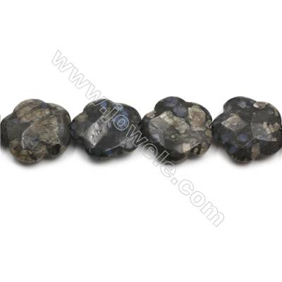 "Natural Grey Opal Faceted Beads Strands, Flower, Size 33mm, Hole 1mm, 15~16""/strand"