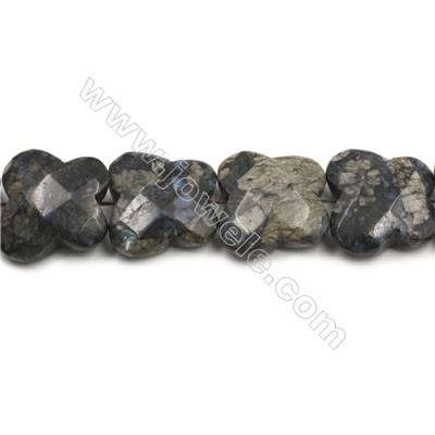 """Natural Grey Opal Faceted Beads Strand, Butterfly, Size 30x33mm, Hole 1mm, 15~16""""/strand"""
