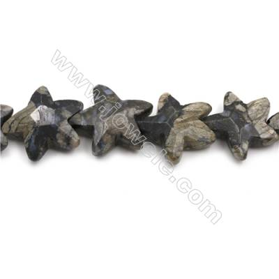 """Natural Grey Opal Faceted Beads Strand, Stars, Size 30x35mm, Hole 1mm, 15~16""""/strand"""