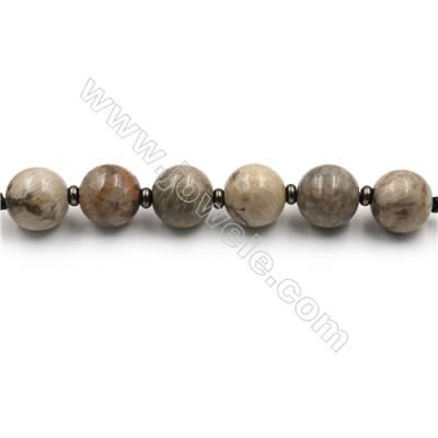"Natural Coral Fossil Jasper Beads Strands, Large Round Beads, Size 30mm, Hole 4.5mm, 15~16""/strand, 6 beads"