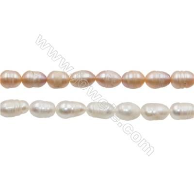 "Multicolor Natural Fresh Water Pearl, Size 7~8mm, Hole 0.7mm, 15~16""/strand"