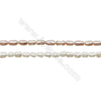 "Multicolor Natural Fresh Water Pearl, Size 2~3mm, Hole 0.4mm, 15~16""/strand"