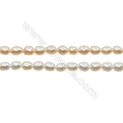 "Multicolor Natural Fresh Water Pearl, (Dyed), Size 3~4mm, Hole 0.4mm, 15~16""/strand"