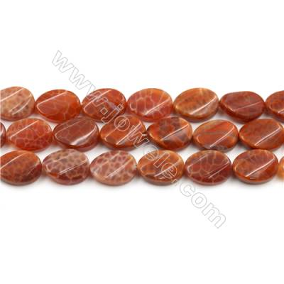 "Natural Fire Agate Beads Strands, Twisted Flat Oval, Size 10x14mm, Hole 0.8mm, 15~16""/strand"