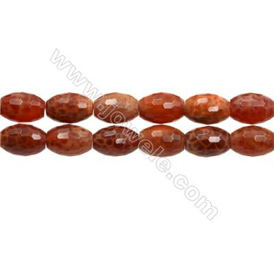 """Natural Fire Agate Faceted Beads Strand, Bucket, Size 10x14mm, Hole 1mm, 15~16""""/strand"""