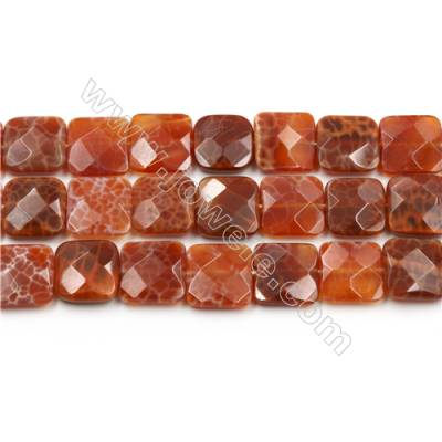 "Natural Fire Agate Faceted Beads Strands, Square, Size 16x16mm, Hole 0.8mm, 15~16""/strand"