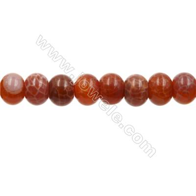 "Natural Fire Agate Beads Strands, Abacus, Size 11x16mm, Hole 1mm, 15~16""/strand"